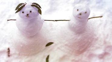 Mansfield & Mt Buller, Snow Play