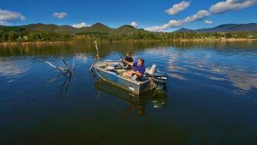 Mansfield & Mt Buller, Fishing
