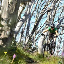 Mt Buller Epic Mountain Bike Park Misty Twist Intermediate XC