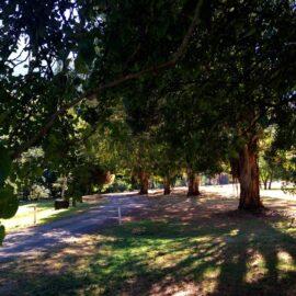 Mirimbah Park