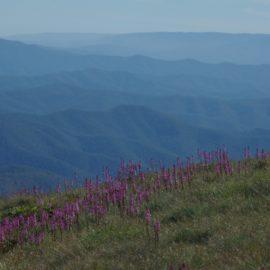 Peaceful vista over ranges