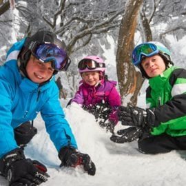 Mt Buller Day Tours